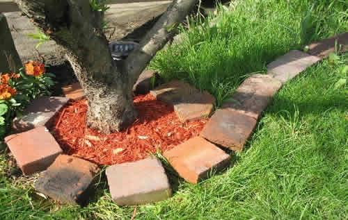 Приствольный круг дерева из старого кирпича